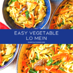 Easy Breezy Vegetable Lo Mein