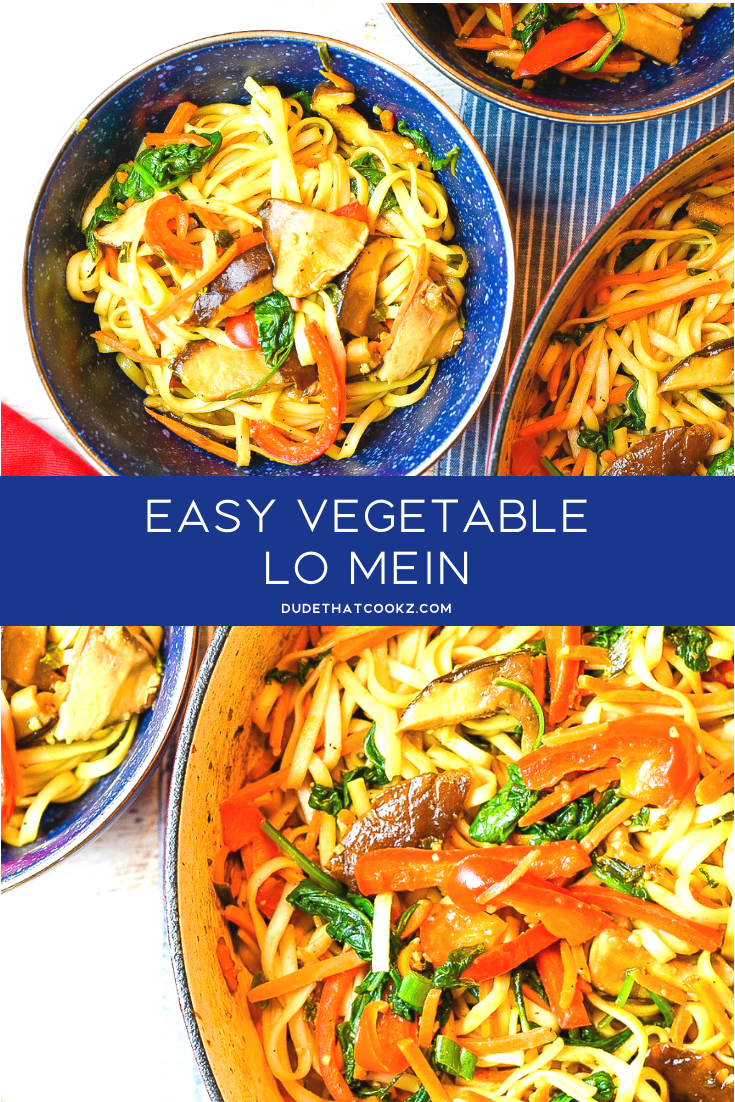 I truly enjoyed Vegetable Lo Mein growing up and it's so simple and easy to make. Forget about takeout when you can make this at home is less than 20 minutes. #lomein #vegetarian #vegetarianrecipes #vegetablelomein #noodles #vegetariannoodles #dinnerrecipes #lunchrecipes #dinnerideas #veggies #vegetables #healthyrecipes #pasta #pastarecipes