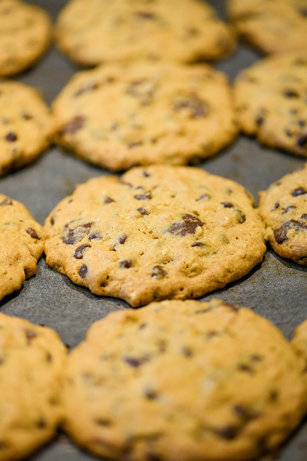 Baked DoubleTree Chocolate Chip Cookies