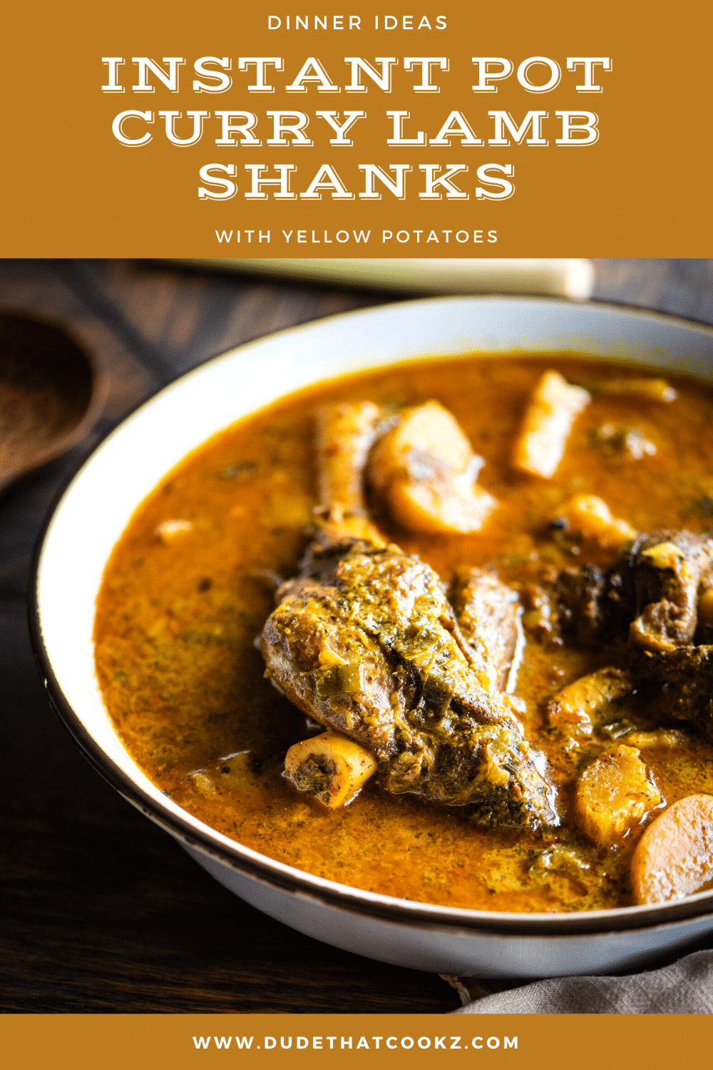 instant pot curry lamb shanks